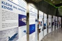 Die Ausstellung des UN-Sekretariats im Stadthaus